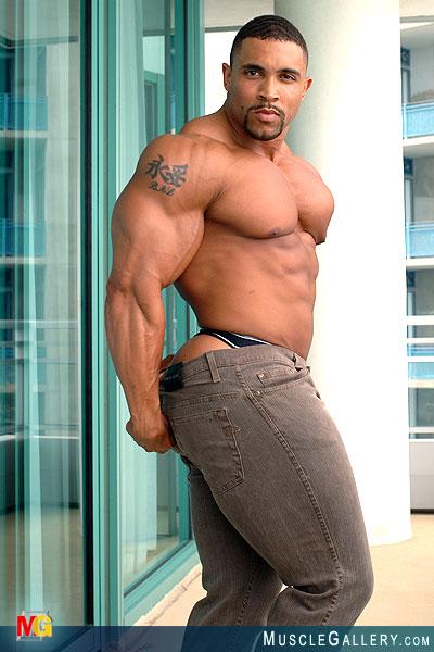 Free Gay Muscle Galleries 116